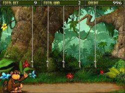 Kostenloser Online-Casino-Spielautomat Crazy Monkey II
