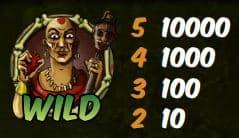 Wild-Symbol des kostenlosen Spielautomaten Relic Raiders ohne Registrierung
