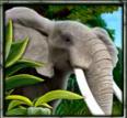 Bild des Online-Automatenspiels The Jungle II