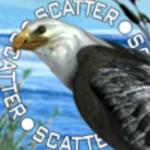 Scatter-Symbol des Casino-Automatenspiels Endless Summer