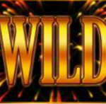 Wild-Symbol - Golden Rocket