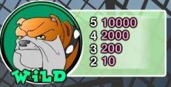 Auszahlungstabelle des Wild-Symbols - Dog Pound Dollars Online-Slot