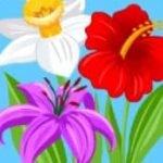 Bonus-Symbol des gratis Bee Land Spielautomaten