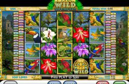 Kostenlos Spielautomat Amazon Wild spielen
