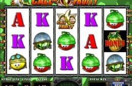 Online-Casino-Automatenspiel Call of Fruity