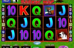 Bild aus Spielautomaten Barkin' Mad Online