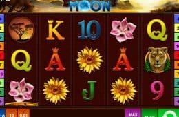 Bild vom Online-Spielautomat Savanna Moon