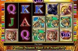 Spielen Sie kostenlos Spielautomat Cats