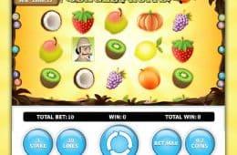 Ein Bild des Online-Spielautomaten Jungle Fruits