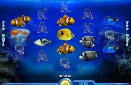 Spielen Sie gratis Online-Slot Pacific Paradise