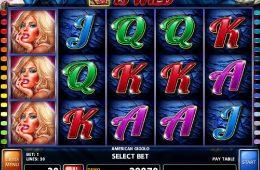 Spielen Sie kostenlos Online-Automatenspiel American Gigolo