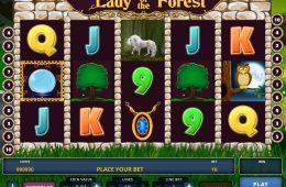 Spielen Sie Automatenspiel Lady of the Forest ohne Einzahlung