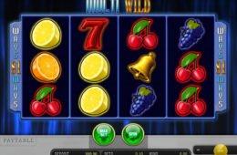 Ein Bild des Multi Wild Online-Automatenspiels