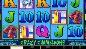 Tragamonedas gratis de casino Crazy Chameleons