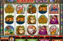 Tragaperras gratis Karate Pig