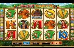 Juega la tragamonedas gratuita Sweet Harvest sin depósito