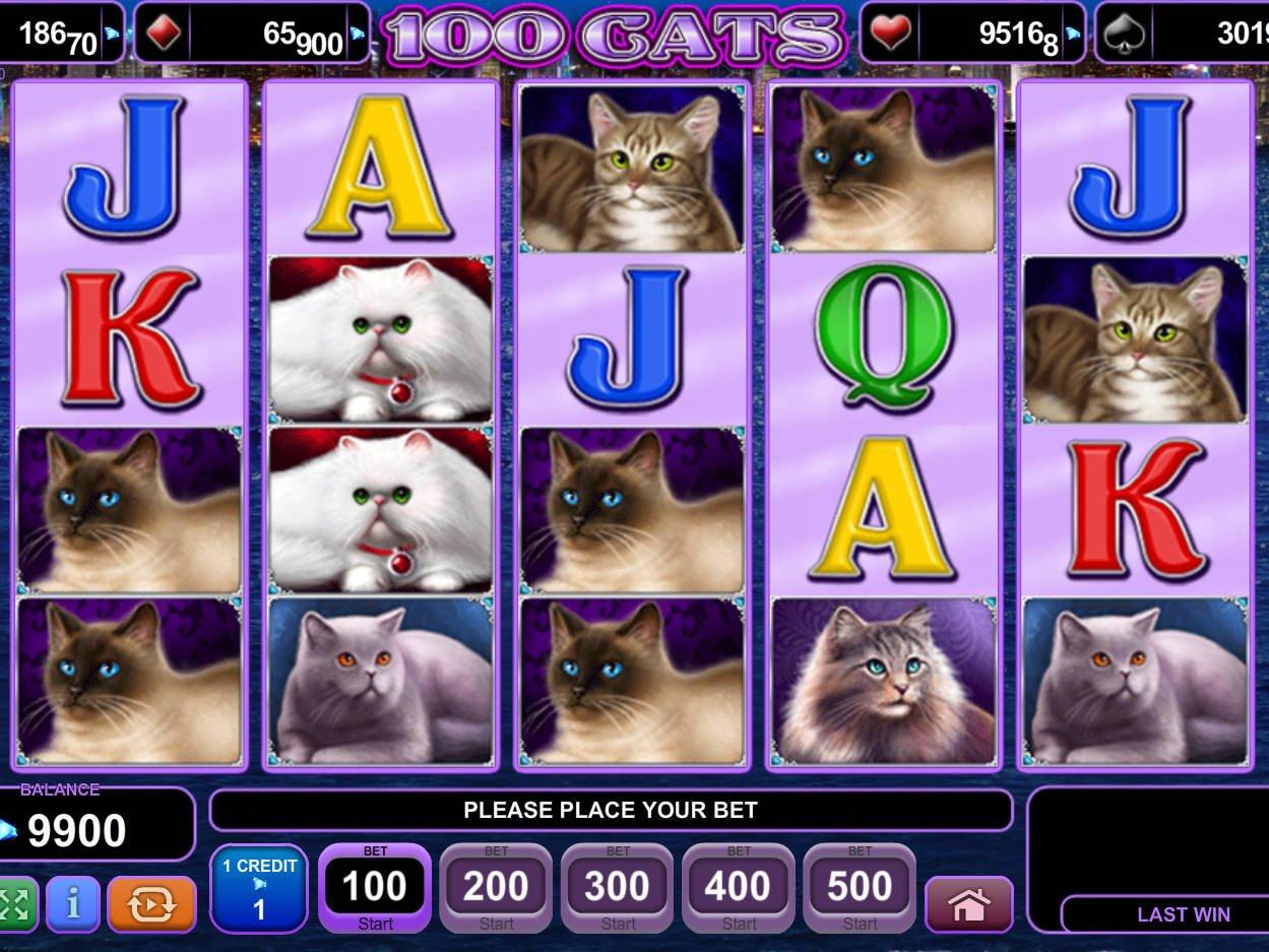 100 cats máchinas tragamonedas gratis en EGT Casinos en línea