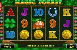 Máquina tragamonedas de casino, Magic Forest