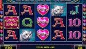 Juego online sin depósito Diamond Cats