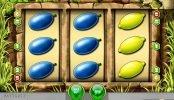 Máquina tragamonedas de casino online gratis Honey Bee