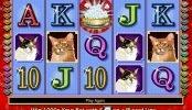Tragaperras online gratuita sin suscripción Kitty Glitter