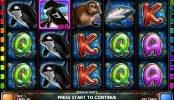 Tragamonedas sin suscripción Penguin Party