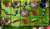 Tragamonedas gratis Secrets of the Amazon