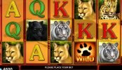 Juego online sin depósito Cats Royal