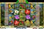 Az Amazon Wild ingyenes online nyerőgép képe
