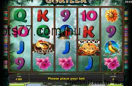 A Gorilla ingyenes online nyerőgép képe