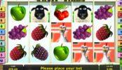 Ingyenes online nyerőgép Fruit Farm regisztráció nélkül