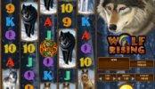Wolf Rising nyerőgépes online játék szórakozáshoz