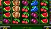 Játsszon a Fortuna's Fruits nyerőgéppel