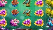 Játsszon a Fruitoids online nyerőgéppel