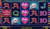 Diamond Cats online ingyenes pénzbefizetés nélkül is játszható nyerőgép
