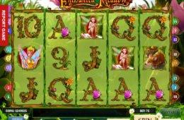 Nyerőgépes játék online Enchanted Meadow szórakozáshoz