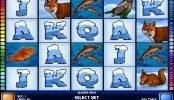 Ingyenes nyerőgépes játék Alaska Wild pénzbefizetés nélkül