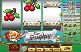 Ingyenes casino játék Cash Puppy befizetés nélkül