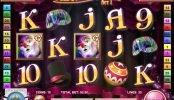 Nyerőgépes játék Cirque du Slots online