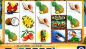 -- Luau Loot online nyerőgép befizetés nélkül játszható