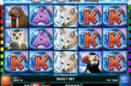 Nyerőgépes játék Jolly Beluga Whales pénzbefizetés nélkül