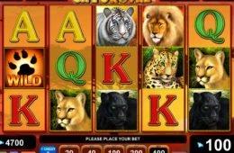 Befizetés nélküli Cats Royal online