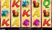 Ingyenes Queen of Rio online casino nyerőgép