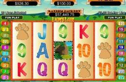 Lion´s Liar online casino játékgép