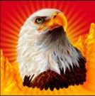 Az Eagle Bucks ingyenes nyerőgépes játék vad szimbóluma