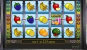 Darmowa gra slotowa online Fruit Cocktail 2