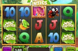 Gra hazardowa nie wymagająca ściągania Wild Antics