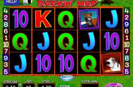 Obrazek z maszyny do gier Barkin' Mad