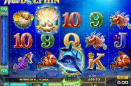 Kręć bębnami gry hazardowej online Wild Dolphin