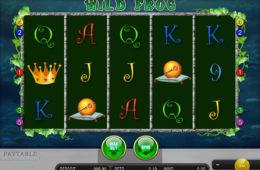 Gra hazardowa online Wild Frog nie wymaga rejestracji